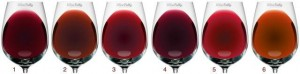 Red wine colour chart according to age and vintage of the wine