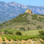 Rioja wine estate.-w400-h300